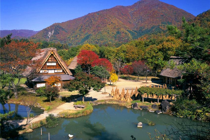 【一日游】富士山赏枫之旅