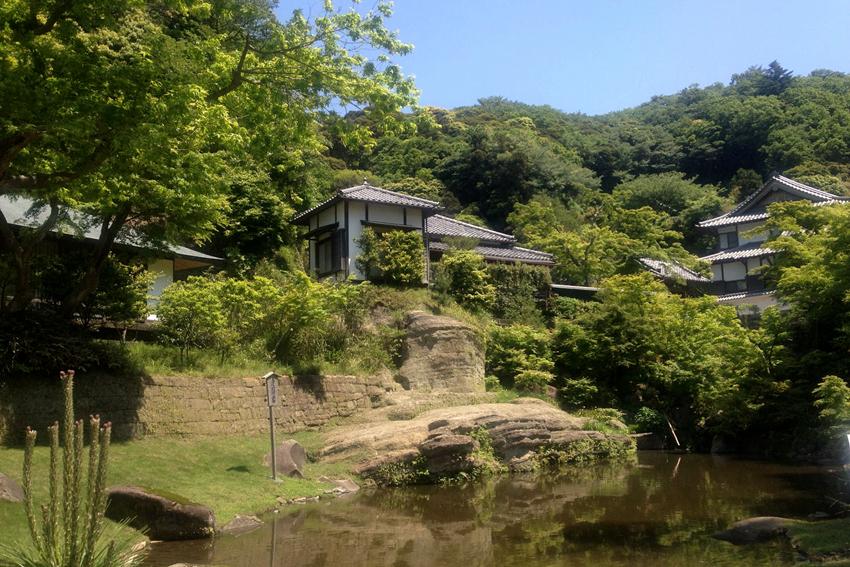一日游:圆觉寺+明月院+建长寺+小町通(东京出发)