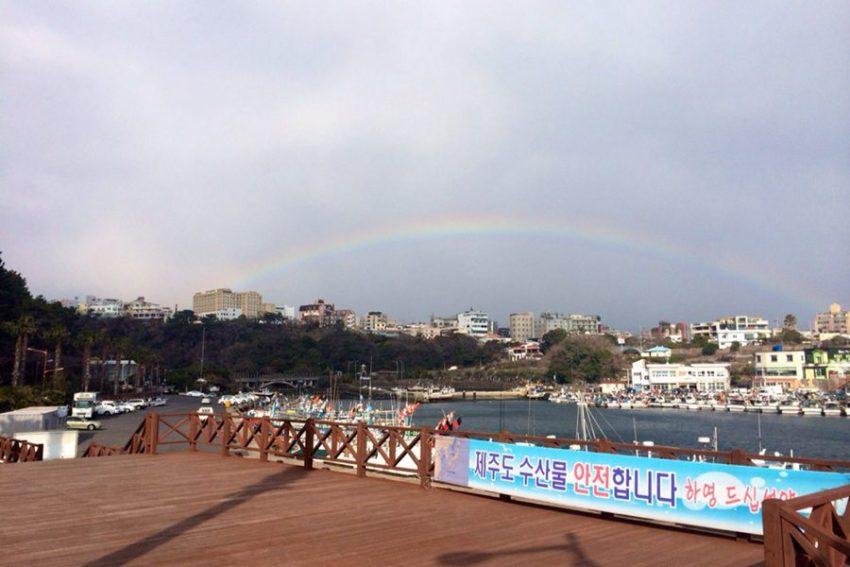 一日游:西归浦港+新缘桥+鸟岛+正房瀑布