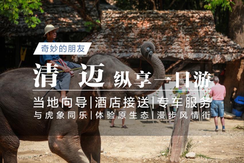 【一日游】奇妙的朋友:美莎大象营+老虎王国+宁曼路+3D艺术博物馆