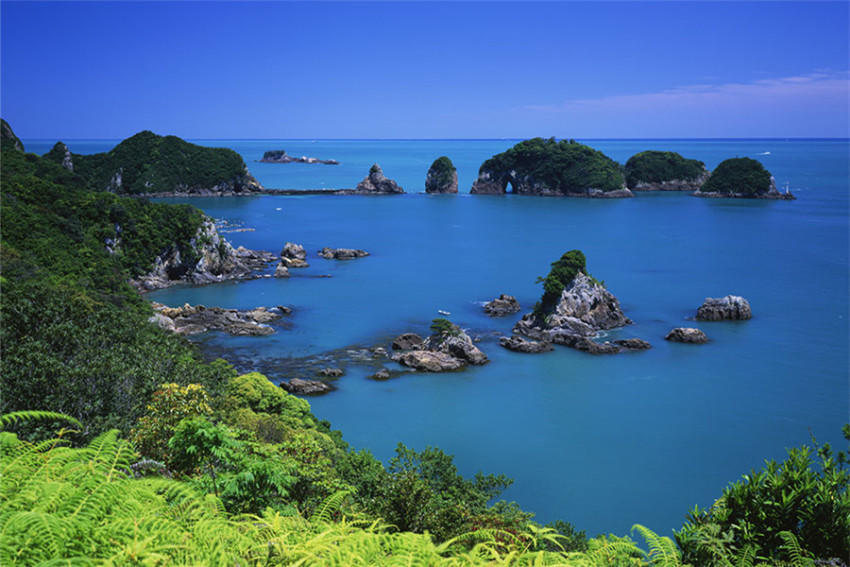 【纪伊半岛七日游】 观山听海+温泉乐园+海鲜极牛—带你深度体验原汁原味的日本