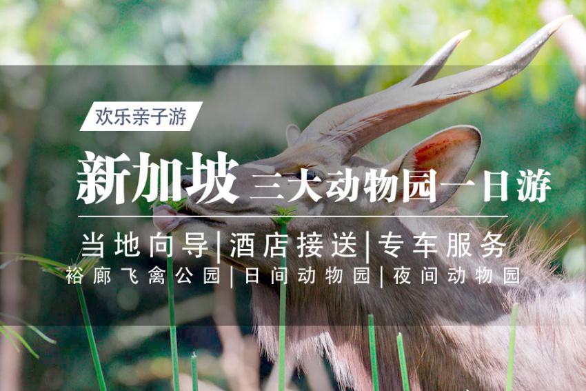 【新加坡三大动物园亲子一日游】裕廊飞禽公园+日间动物园+夜间动物园(中文专车司导)