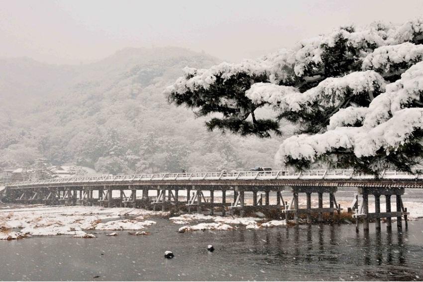 【京都冬季观雪3天2晚深度游】伏见稻荷大社+祗园+岚山+嵯峨山竹林