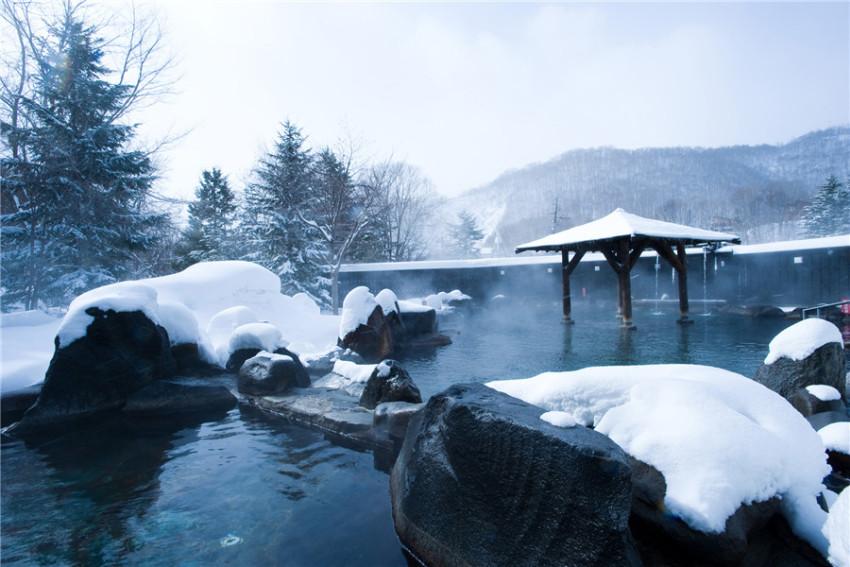 【冬季富士山温泉之旅】泡汤赏雪:忍野八海+富士山河口湖+山中湖温泉