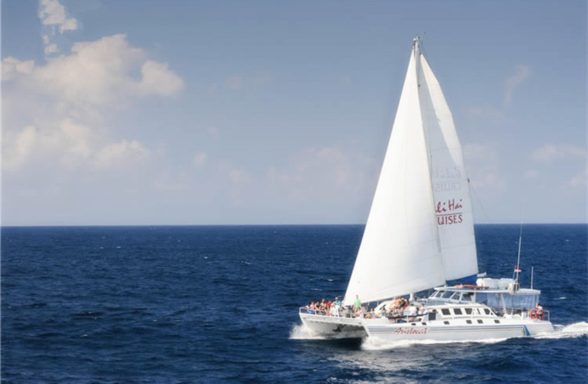 【蓝梦岛一日游】白色大帆船:水上活动+浮潜+玻璃船+农家乐+午餐BBQ