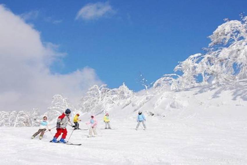 【畅游包车】札幌市区-富良野王子滑雪场单程包车