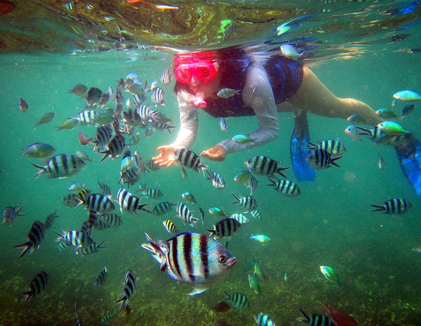 【蓝梦岛一日游】蓝梦岛海底漫步(含免费照片)+水上活动+乡村游+午餐下午茶