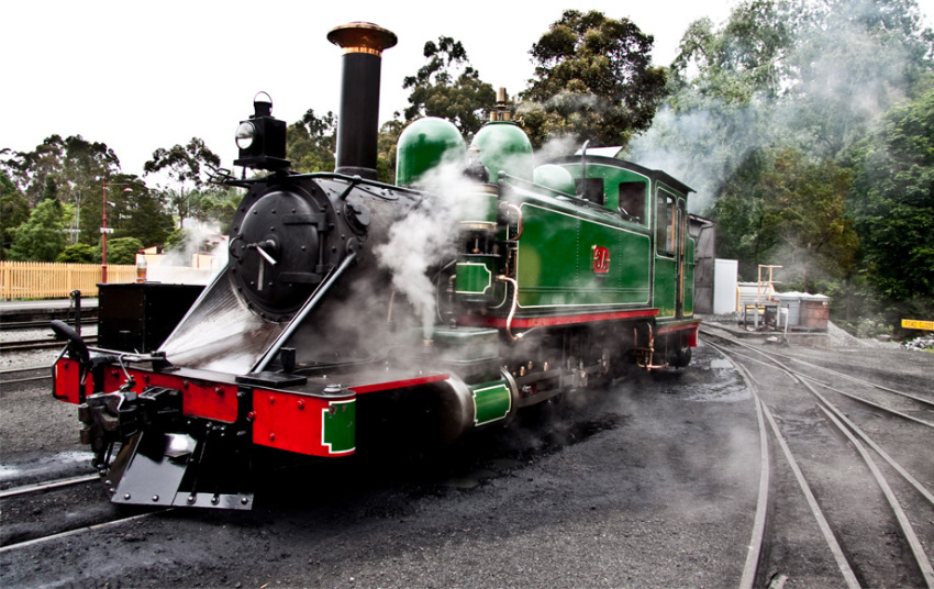 【超值自然体验之旅】普芬比利蒸汽火车+野生动物园+诺比司角+企鹅归巢(12小时用车)