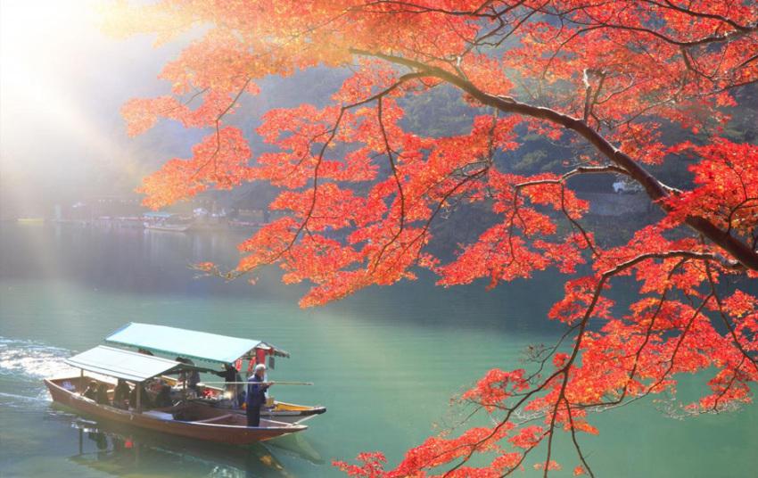 【红叶特辑】关西红叶篇:岚山+奈良东大寺+奈良公园+春日大社+三山和风料理