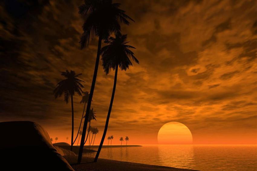 【环岛包车】夏威夷欧胡岛大环岛经典一日游(檀香山市区和怀基基沙滩区域)